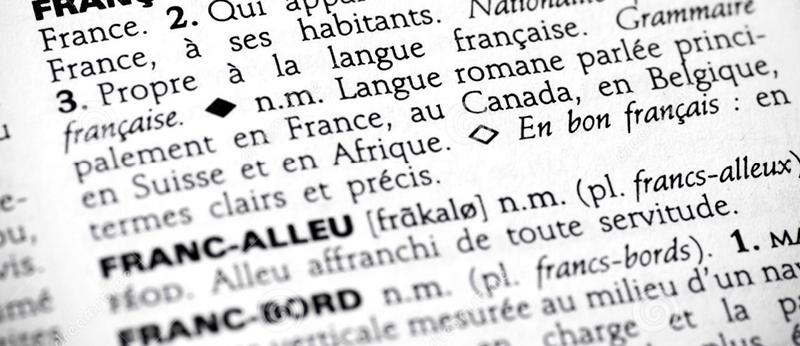 5 minutes pour comprendre les dictionnaires et les encyclopédies